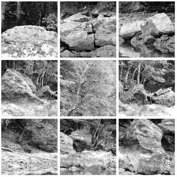 "Jean-Pierre Sergent, ""Water, Rocks, Trees & Skies"" #2, photos from canoe trips over the Doubs River"