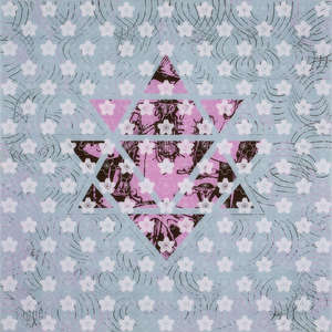Image 44 - Plexi Mayan Diary 2010, JP Sergent