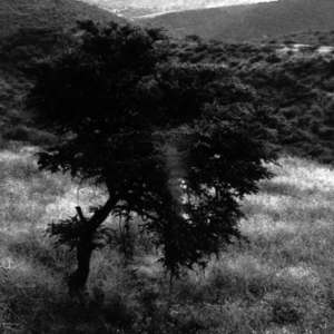 Image 80 - Photos Mexico, JP Sergent