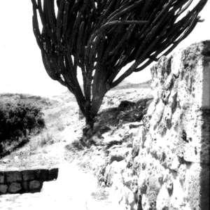 Image 99 - Photos Mexico, JP Sergent