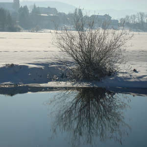 Image 26 - PHOTOS WATER, TREES & SNOW, JP Sergent