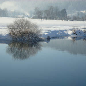 Image 24 - PHOTOS WATER, TREES & SNOW, JP Sergent