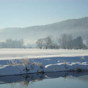 Image 38 - PHOTOS WATER, TREES & SNOW, JP Sergent
