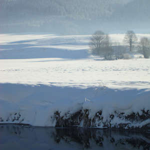 Image 12 - PHOTOS WATER, TREES & SNOW, JP Sergent