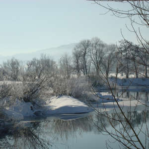 Image 16 - PHOTOS WATER, TREES & SNOW, JP Sergent