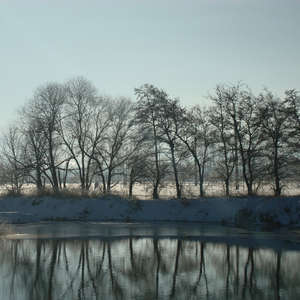 Image 67 - PHOTOS WATER, TREES & SNOW, JP Sergent