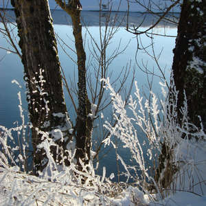 Image 45 - PHOTOS WATER, TREES & SNOW, JP Sergent