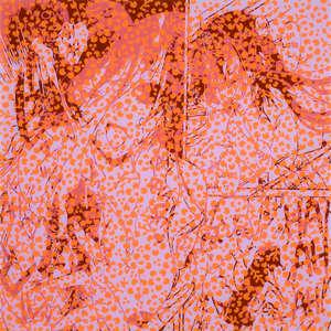 Image 82 - Plexi Suites Entropiques, JP Sergent