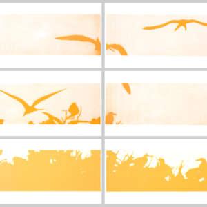 Image 113 - Half Paper 1997/2003,  monoprint, acrylic silkscreened on BFK Rives paper, 61 x 107 cm., JP Sergent