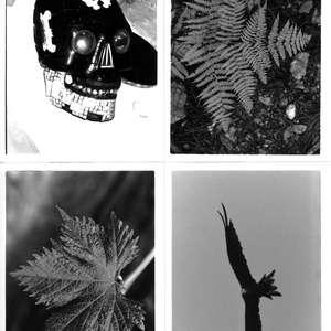 Image 154 - Sketches, JP Sergent