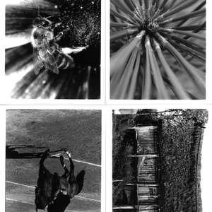 Image 153 - Sketches, JP Sergent