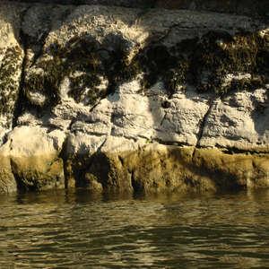 Image 369 - Jean-Pierre sergent, Water, Rocks, Trees & Flowers, April 2014, JP Sergent