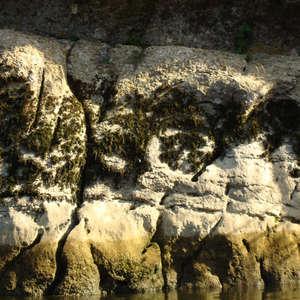 Image 367 - Jean-Pierre sergent, Water, Rocks, Trees & Flowers, April 2014, JP Sergent