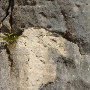 Image 361 - Jean-Pierre sergent, Water, Rocks, Trees & Flowers, April 2014, JP Sergent