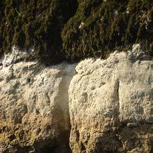 Image 365 - Jean-Pierre sergent, Water, Rocks, Trees & Flowers, April 2014, JP Sergent