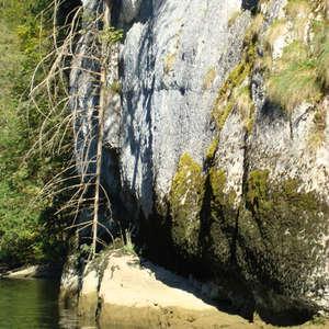 Image 323 - Jean-Pierre sergent, Water, Rocks, Trees & Flowers, April 2014, JP Sergent