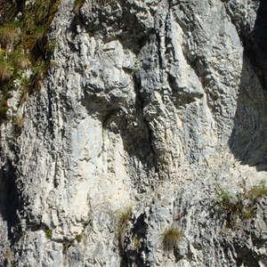 Image 322 - Jean-Pierre sergent, Water, Rocks, Trees & Flowers, April 2014, JP Sergent