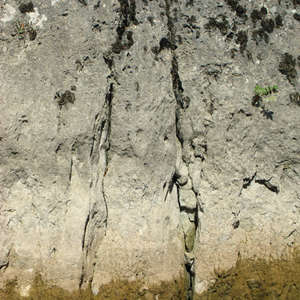 Image 308 - Jean-Pierre sergent, Water, Rocks, Trees & Flowers, April 2014, JP Sergent