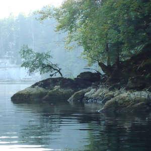 Image 347 - Jean-Pierre sergent, Water, Rocks, Trees & Flowers, April 2014, JP Sergent