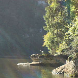Image 342 - Jean-Pierre sergent, Water, Rocks, Trees & Flowers, April 2014, JP Sergent