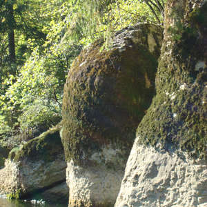 Image 341 - Jean-Pierre sergent, Water, Rocks, Trees & Flowers, April 2014, JP Sergent