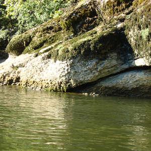 Image 335 - Jean-Pierre sergent, Water, Rocks, Trees & Flowers, April 2014, JP Sergent