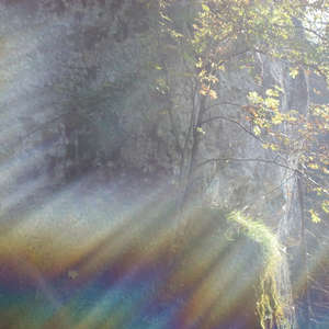 Image 383 - Jean-Pierre sergent, Water, Rocks, Trees & Flowers, April 2014, JP Sergent