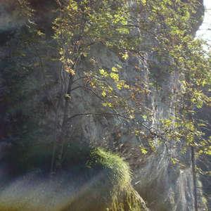 Image 382 - Jean-Pierre sergent, Water, Rocks, Trees & Flowers, April 2014, JP Sergent