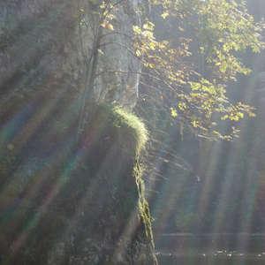 Image 384 - Jean-Pierre sergent, Water, Rocks, Trees & Flowers, April 2014, JP Sergent