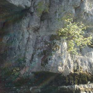 Image 381 - Jean-Pierre sergent, Water, Rocks, Trees & Flowers, April 2014, JP Sergent