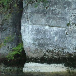Image 372 - Jean-Pierre sergent, Water, Rocks, Trees & Flowers, April 2014, JP Sergent