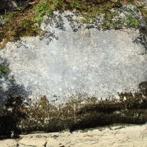 Image 375 - Jean-Pierre sergent, Water, Rocks, Trees & Flowers, April 2014, JP Sergent