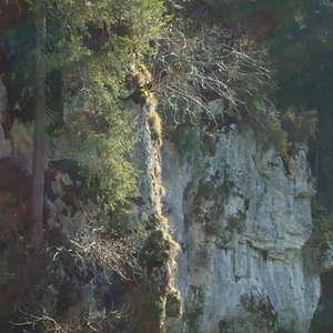 Image 47 - Jean-Pierre sergent, Water, Rocks, Trees & Flowers, April 2014, JP Sergent