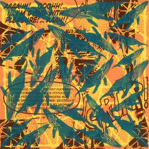 Image 111 - Plexi Suites Entropiques, JP Sergent