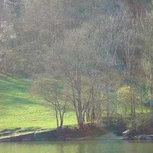 Image 26 - Jean-Pierre sergent, Water, Rocks, Trees & Flowers, April 2014, JP Sergent