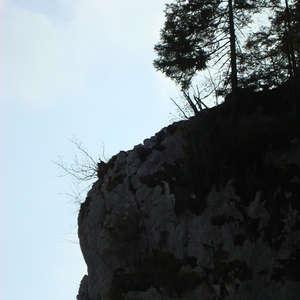 Image 31 - Jean-Pierre sergent, Water, Rocks, Trees & Flowers, April 2014, JP Sergent