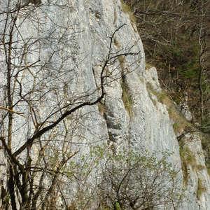 Image 37 - Jean-Pierre sergent, Water, Rocks, Trees & Flowers, April 2014, JP Sergent