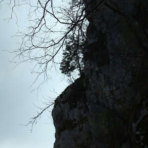 Image 4 - Jean-Pierre sergent, Water, Rocks, Trees & Flowers, April 2014, JP Sergent