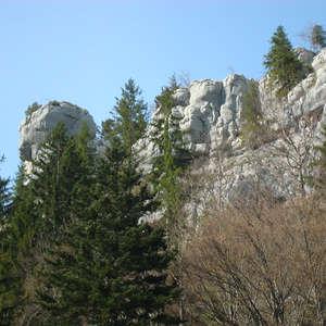 Image 8 - Jean-Pierre sergent, Water, Rocks, Trees & Flowers, April 2014, JP Sergent