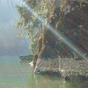 Image 18 - Jean-Pierre sergent, Water, Rocks, Trees & Flowers, April 2014, JP Sergent
