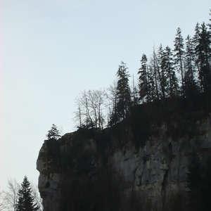 Image 75 - Jean-Pierre sergent, Water, Rocks, Trees & Flowers, April 2014, JP Sergent