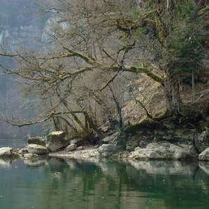 Image 78 - Jean-Pierre sergent, Water, Rocks, Trees & Flowers, April 2014, JP Sergent