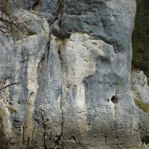 Image 85 - Jean-Pierre sergent, Water, Rocks, Trees & Flowers, April 2014, JP Sergent