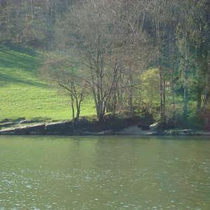 Image 39 - Jean-Pierre sergent, Water, Rocks, Trees & Flowers, April 2014, JP Sergent