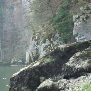 Image 43 - Jean-Pierre sergent, Water, Rocks, Trees & Flowers, April 2014, JP Sergent