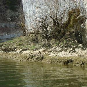 Image 63 - Jean-Pierre sergent, Water, Rocks, Trees & Flowers, April 2014, JP Sergent