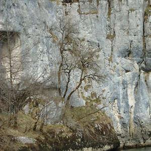 Image 86 - Jean-Pierre sergent, Water, Rocks, Trees & Flowers, April 2014, JP Sergent