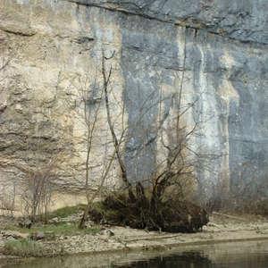 Image 87 - Jean-Pierre sergent, Water, Rocks, Trees & Flowers, April 2014, JP Sergent