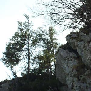 Image 95 - Jean-Pierre sergent, Water, Rocks, Trees & Flowers, April 2014, JP Sergent