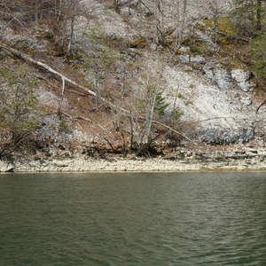 Image 99 - Jean-Pierre sergent, Water, Rocks, Trees & Flowers, April 2014, JP Sergent
